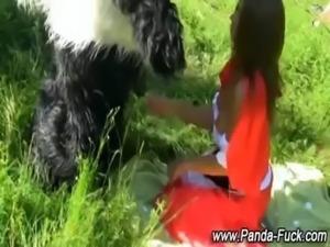 Plush panda fairytale for red riding hood free