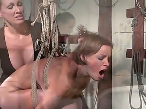 The collection of hot scenes with Wild Mandy Bright dominating sweet babes