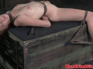 Wax play sub penetrated with steel dildo while suspended