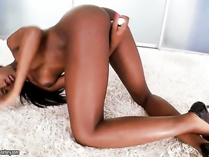 Cocoa Ana Foxxx enjoys another hardcore session with horny man in interracial...