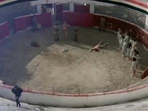 Gefangene Frauen (1980) - Scene 12 France Lomay Fight