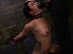 Bdsm domina bangs slave