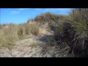 Beach Tubes from XTube, xHamster, Beeg, Hardsextube