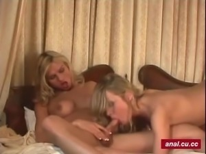 Horny shemale in stockings gets dick in ass