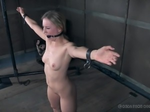 The master has unlucky Riley tied up in the dungeon and he is not going to...